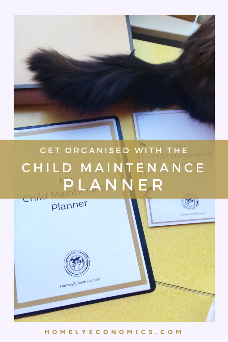 Need help staying on top of the paperwork in your Child Support case? Click on the picture to download your free Child Maintenance planner and get help organising your CMS case.