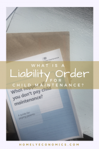 What is a liability order for child maintenance, and is it the same as a liability order for council tax? Read more about child maintenance and liability orders at homelyeconomics.com