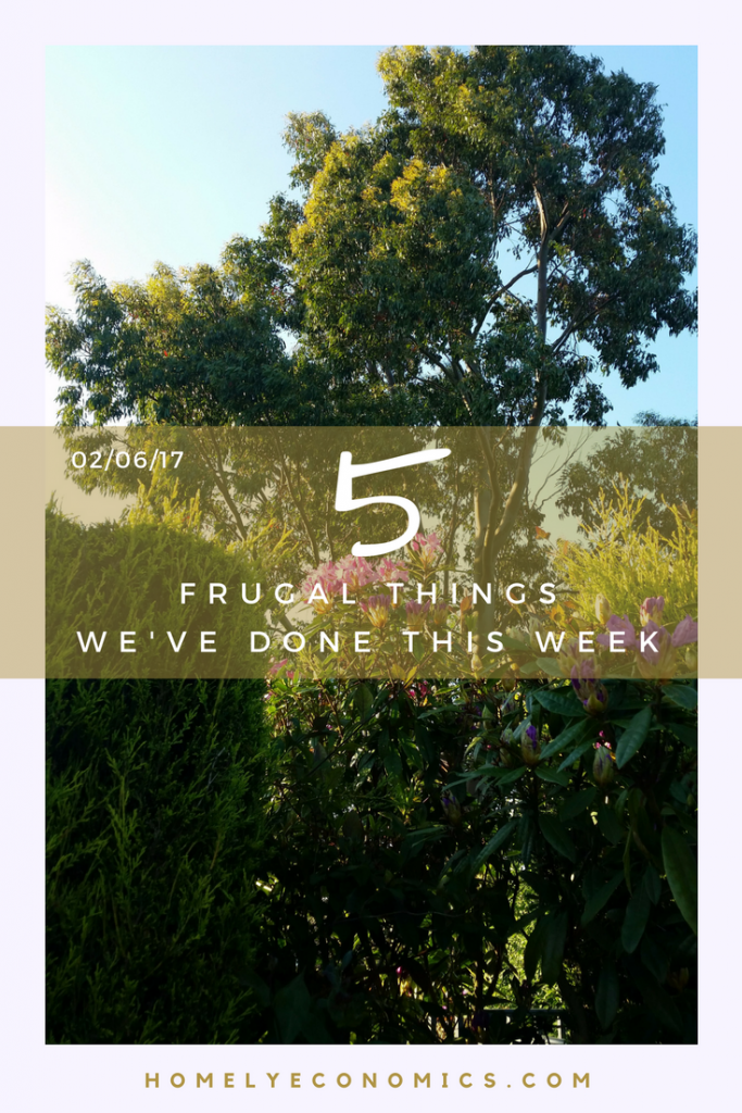 Here are five frugal things that we did over the last seven days. Click on the picture to read them all!