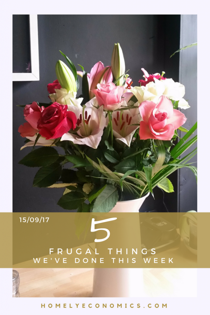 In this week's 5 frugal things I've done a bit of sewing and a bit of looking after myself - on the cheap!