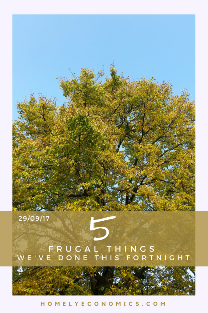 After a week's break, here are five frugal things we've done this fortnight, including supermarket shopping, buying second-hand and more!