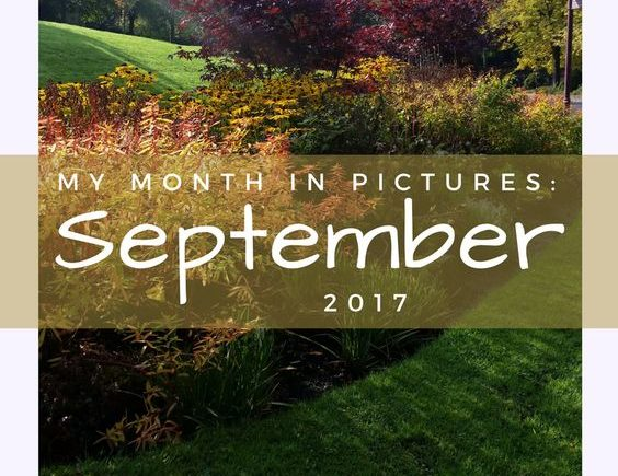 My month in pictures September 2017