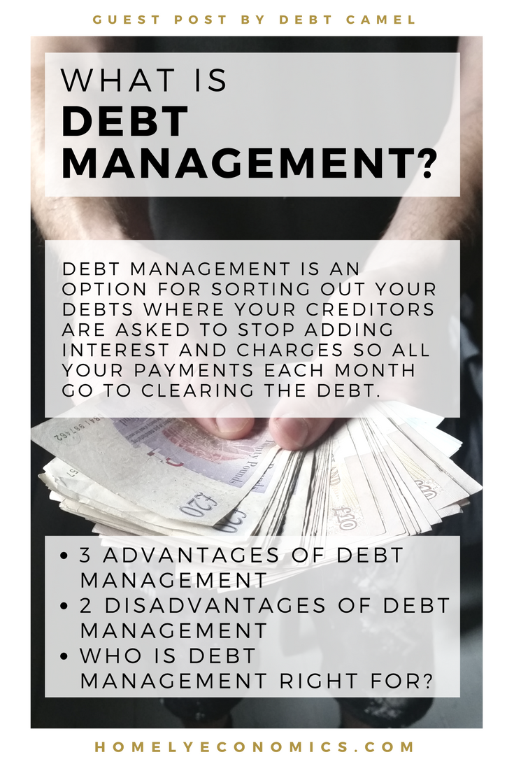 Debt management explained, disadvantages of debt management, advantages of debt management, who is debt management good for?
