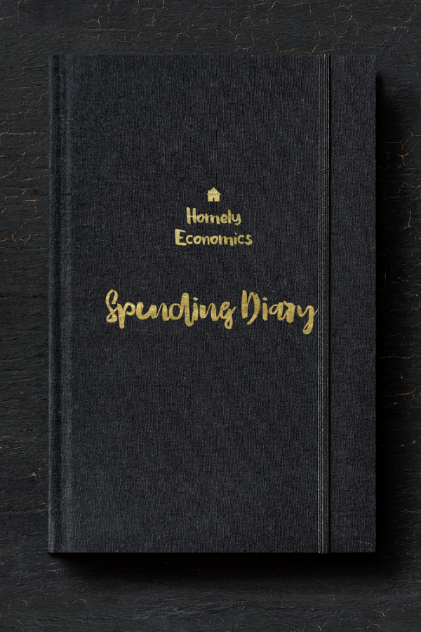 My spending diary - how much of my fun money I've spent during the month.